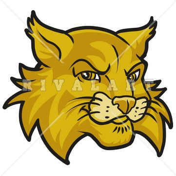 361x361 Free Wildcat Clipart Free Download Clip Art