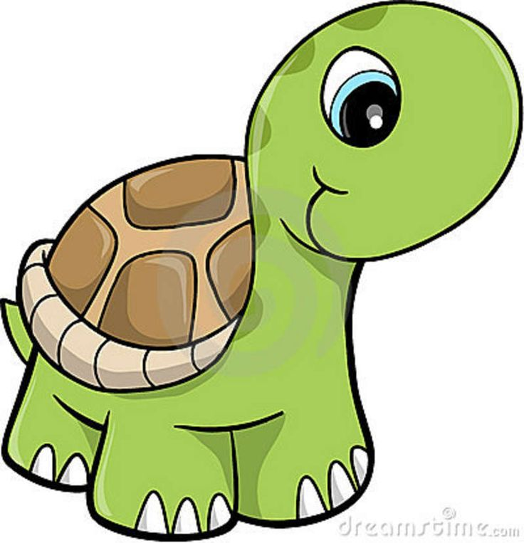736x763 628 Best All Clip Art Zoo Images On Jungle Animals