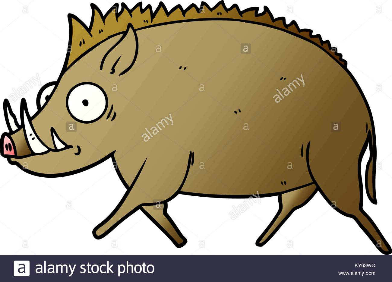 1300x935 Vector Illustration Wild Boar Cartoon Stock Photos Amp Vector