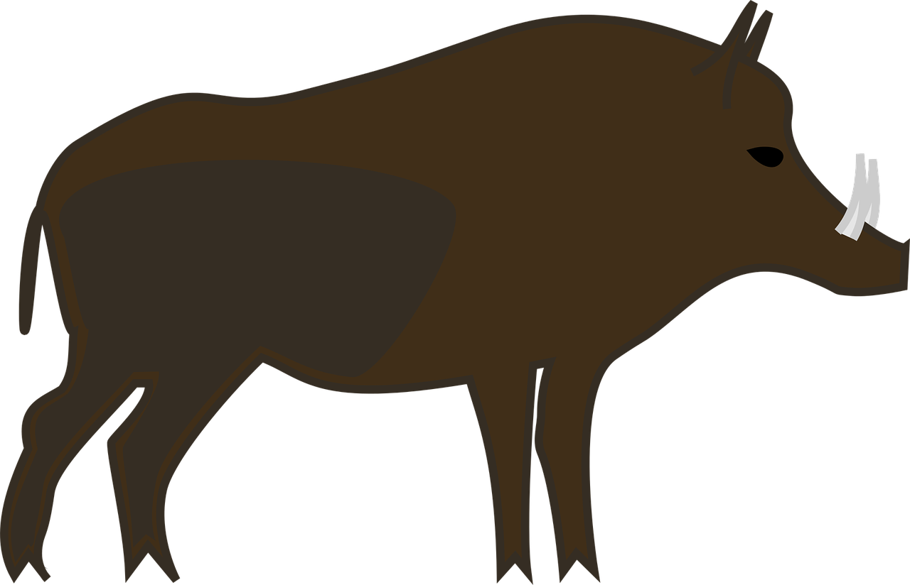 1280x824 Wild Boar Common Warthog Clip Art