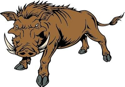 400x277 Luxury Razorback Clipart