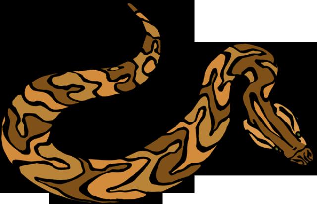 640x413 Anaconda Clipart Brown Snake