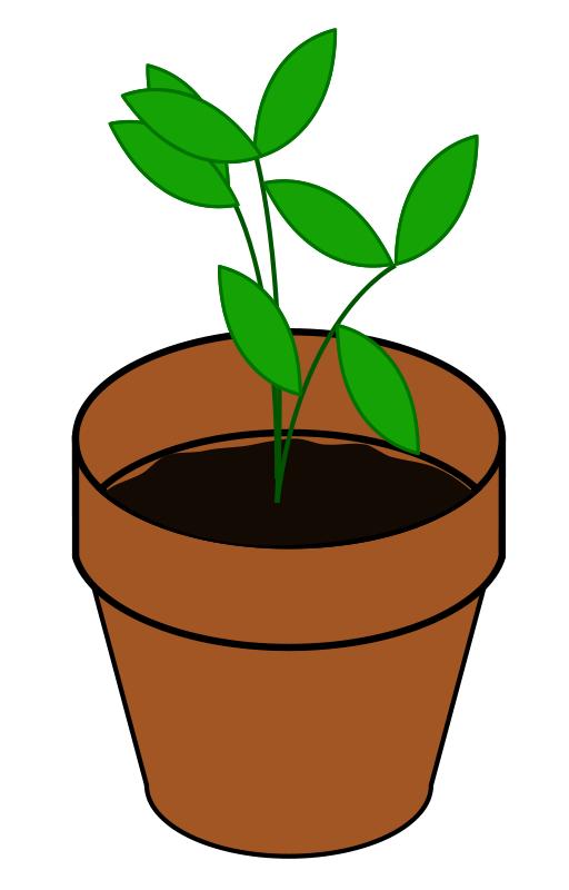 512x800 Plant clipart clip art plants paint clipart tiny 2