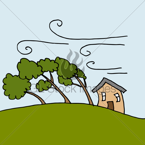 500x500 Heavy Winds Bending Trees On A Windy Day Gl Stock Images