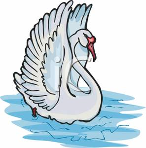 296x300 Clip Art Image A White Swan Stretching Its Wings