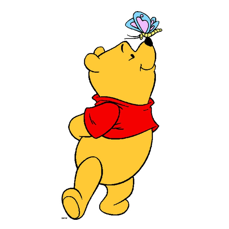 800x800 Disney Decor Winnie The Pooh With Butterfly