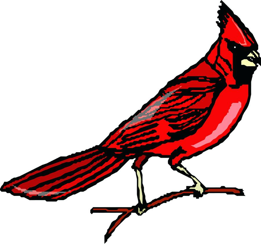 900x860 Cardinals Images Clip Art Bird On Clip Art Tree Branch