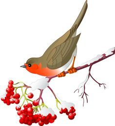 236x260 Free Download Etsy Ideas Bird Clipart, Bird