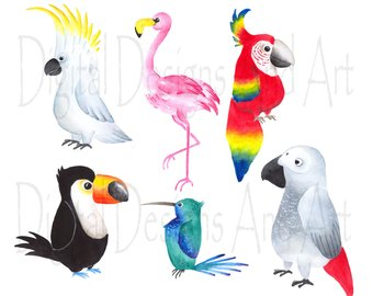 340x270 Watercolor Birds Clipart Winter Birds Clipart Woodland