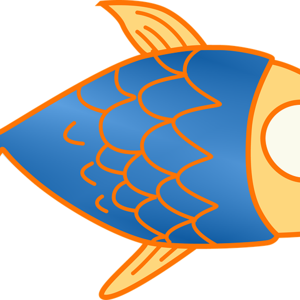 1024x1024 Special Fish Clip Art For Kids Winter Clipart Hatenylo Com
