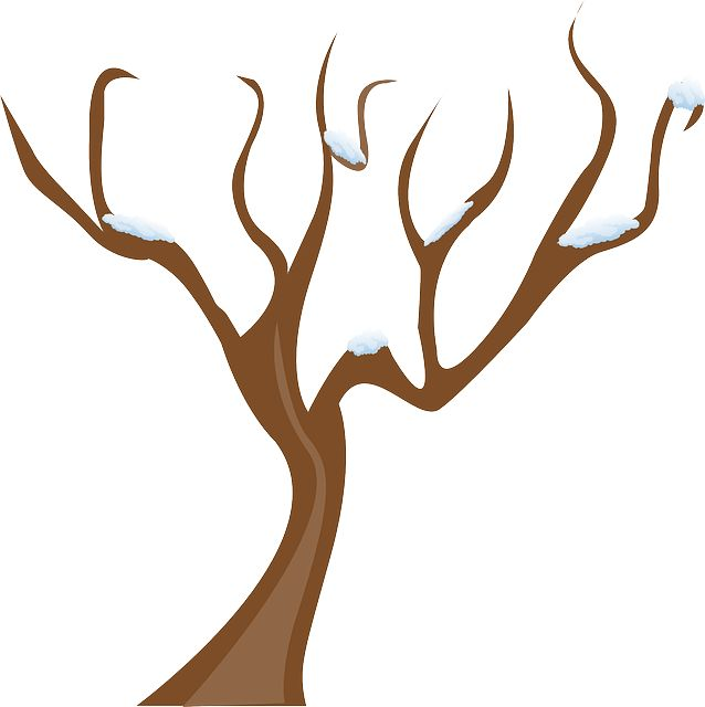 winter tree clipart at getdrawings com free for personal use rh getdrawings com  bare winter tree clip art