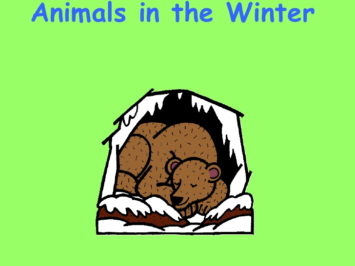 728x546 28+ Collection of Animals In Winter Clipart High quality, free