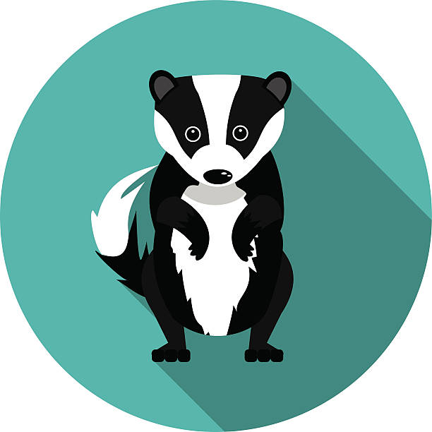 612x612 Innovation Design Badger Clipart Wisconsin Badgers Logo Clip Art
