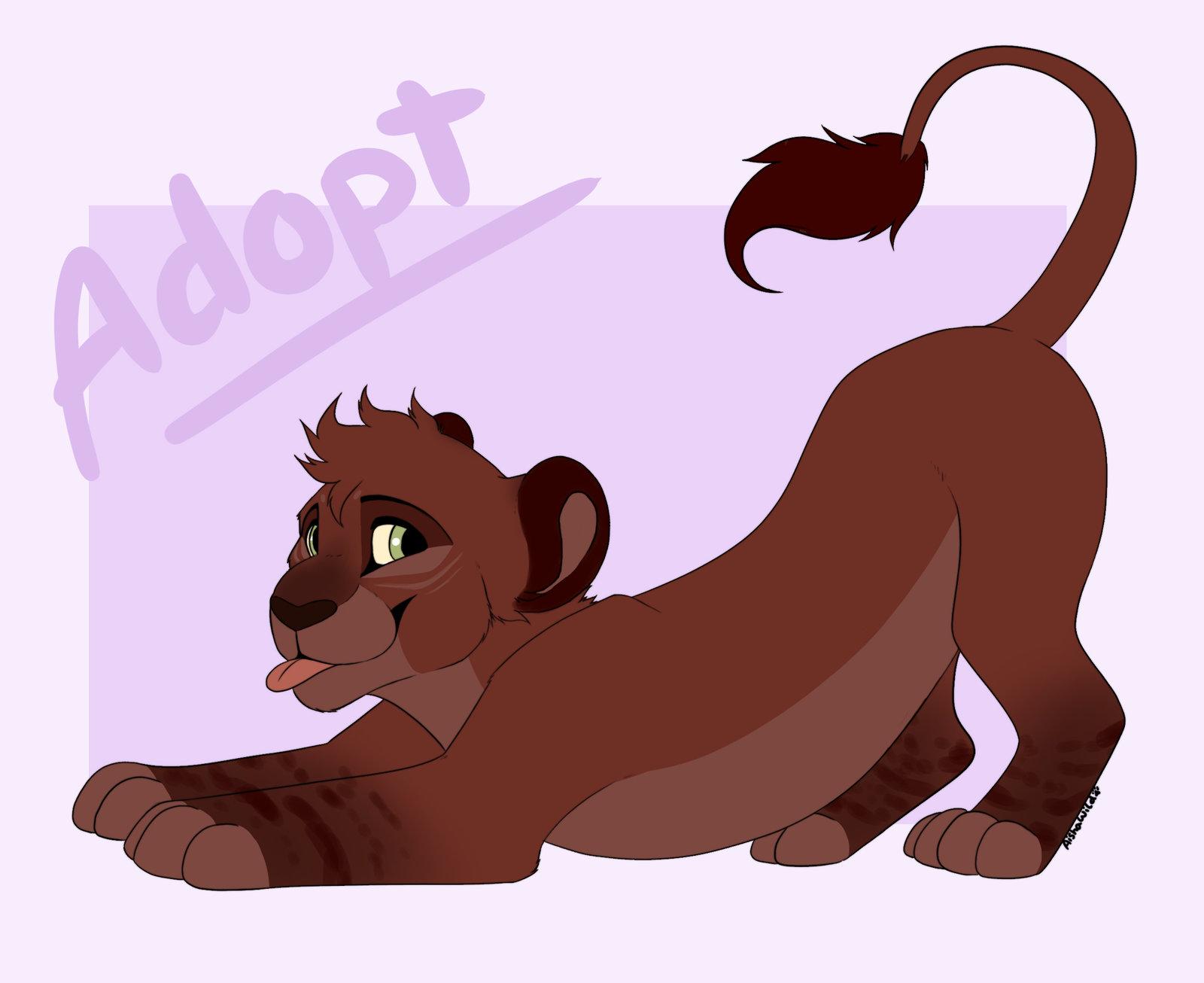 1600x1306 Lion Cub Adopt