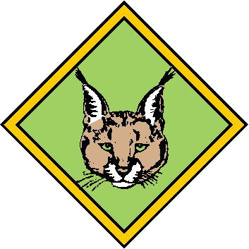 353x353 South African Scout clipart