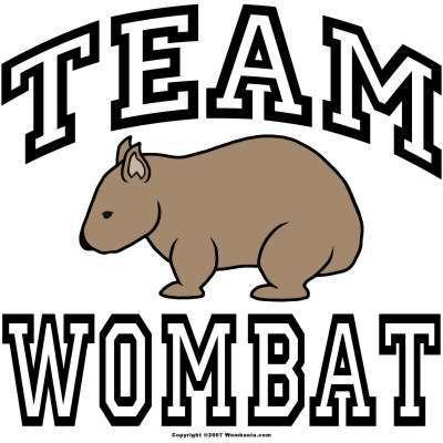 Wombat Clipart