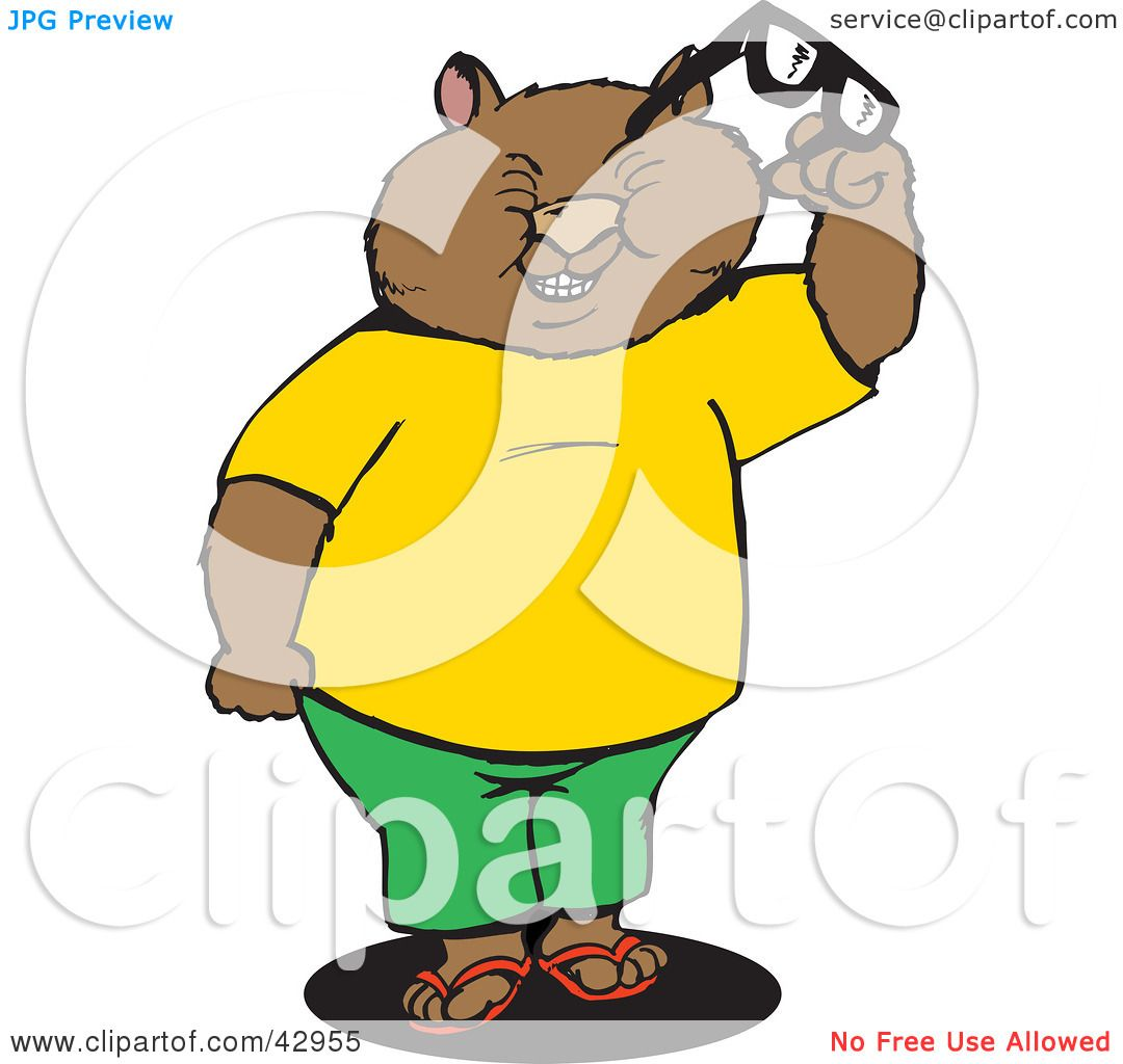 1080x1024 Clipart Illustration Of A Squinting Wombat Holding Glasses By
