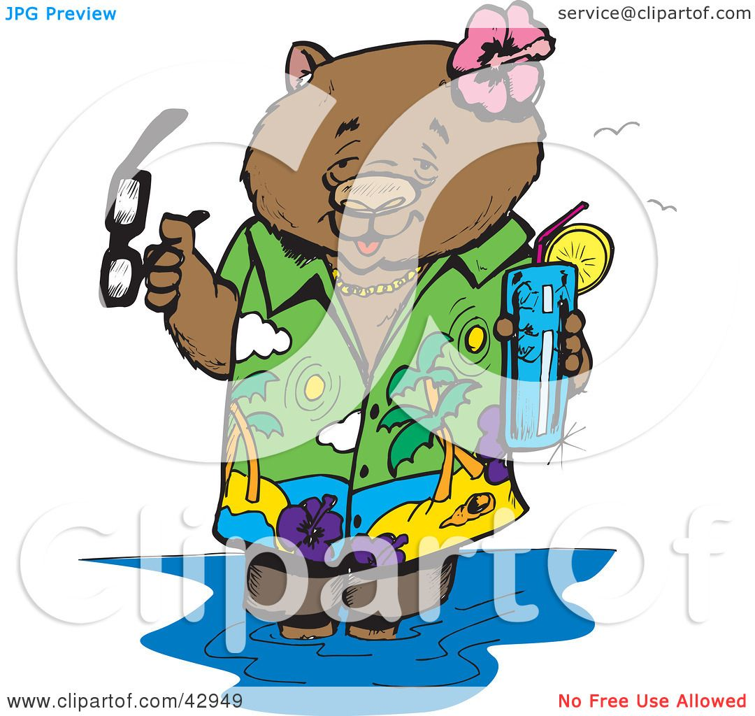 1080x1024 Clipart Illustration Of A Vacationing Wombat Wading In Water