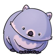220x220 44 Best Cute Wombats Images On Wombat, Art Drawings