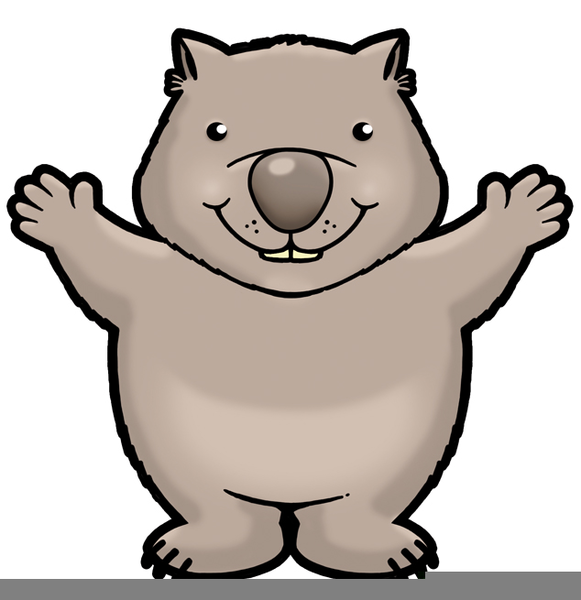 581x600 Wombat Clipart Cartoon Free Free Images