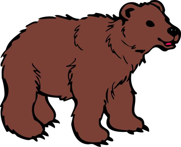 600x487 Clipart Bear Pictures