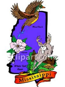225x300 Wood Duck Clipart State Mississippi