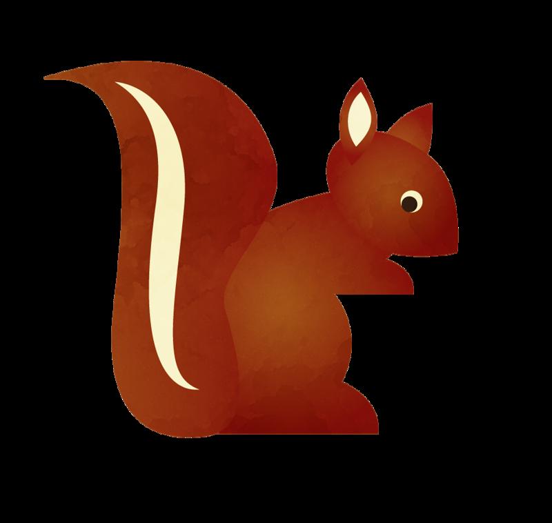 800x758 Squirrel Clip Art