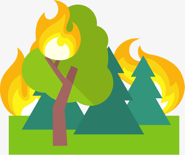 650x544 Fire In The Woods, Fire, Flame,est Fire Png And Vector