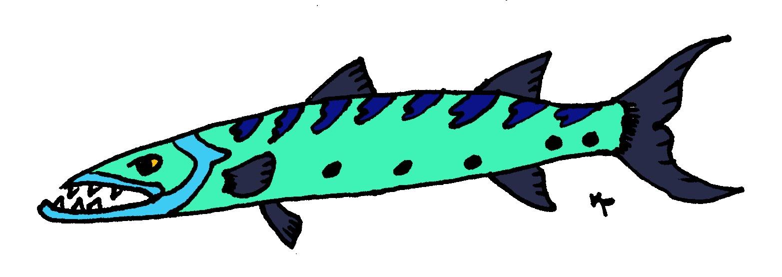 1565x554 Clip Art Barracuda Fish Royalty Free Vector Images