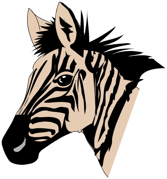 572x615 Collection Of Cute Zebra Clipart Buy Any Image And Use It