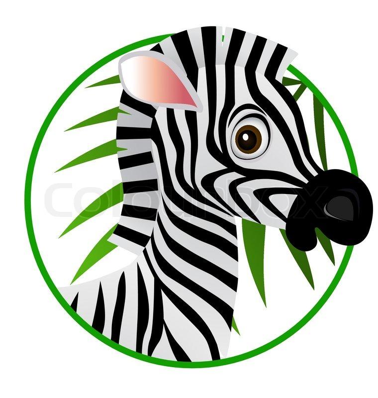 760x800 Cute Zebra Cartoon Stock Vector Colourbox