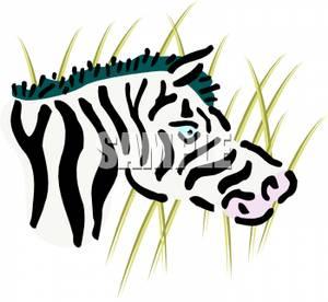 300x276 Zebra Head In Tall Grass Clipart Picture
