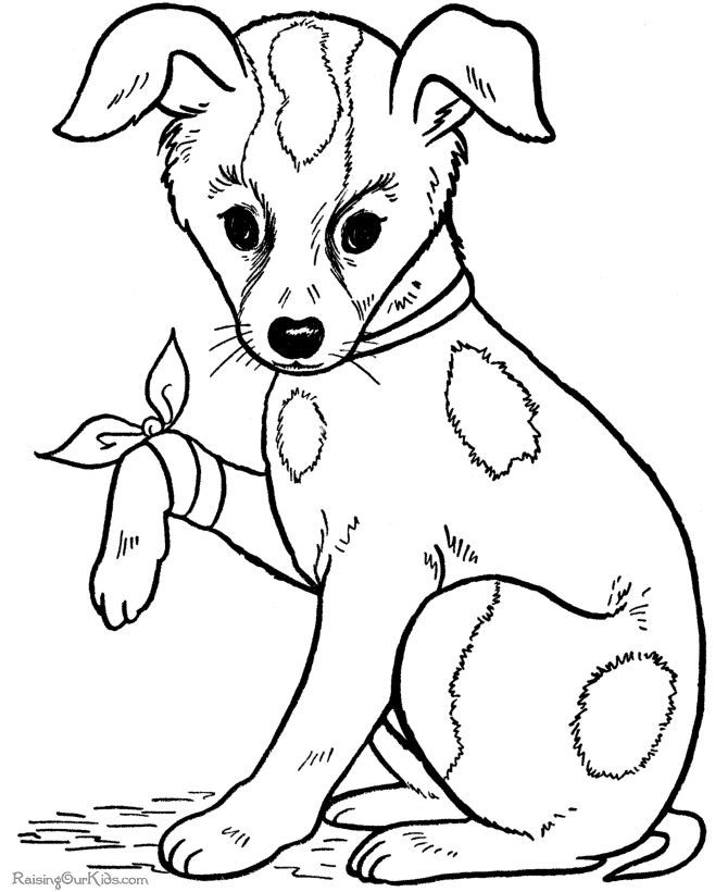670x820 Free Dog Coloring Page Sample Resume