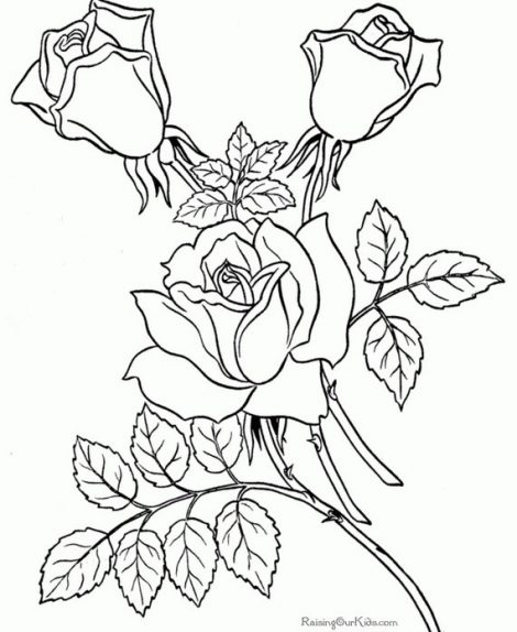 470x574 Coloring Page Free Pages To Color Coloring Sheets Roses Page
