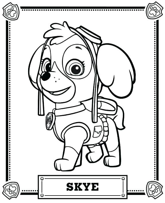 575x707 Stunning Dollar Bill Coloring Page Coloring Pages Stunning Pig