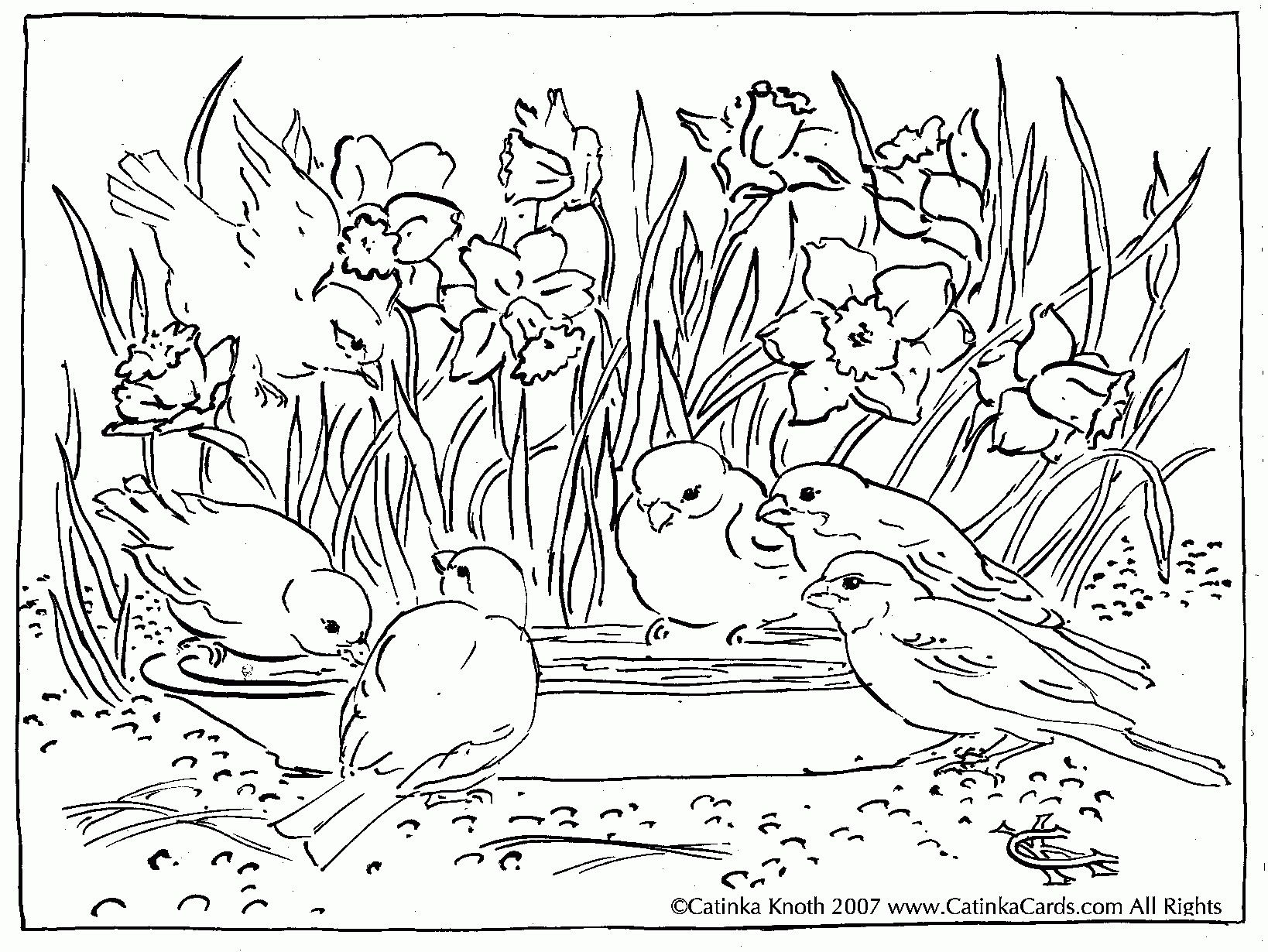 1638x1230 Scenery Coloring Pages Lovely Nature Scenery Coloring Pages