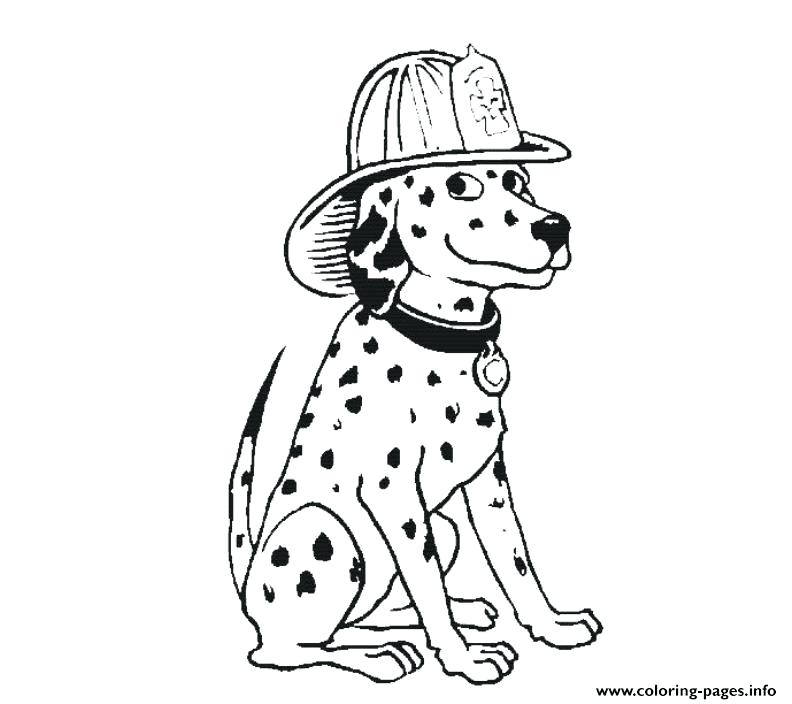 792x704 Dalmation Coloring Pages Dalmatian Fire Dog Coloring Pages