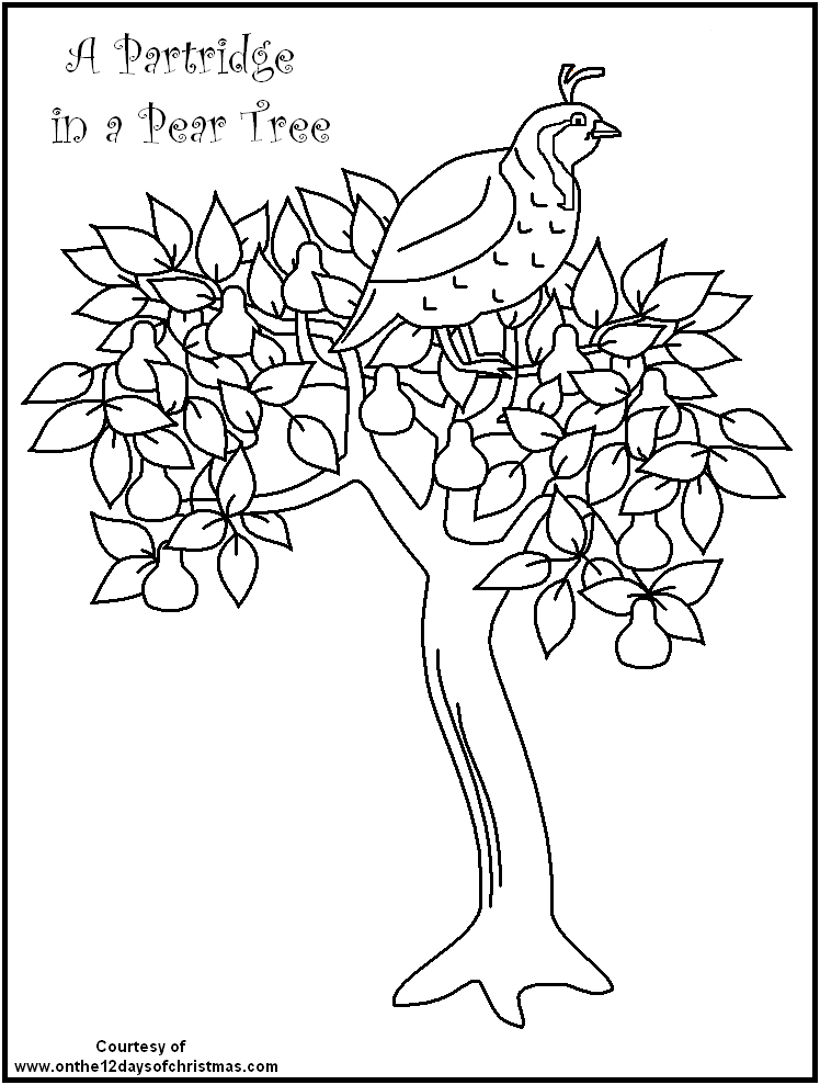 748x989 Days Of Christmas Coloring Pages