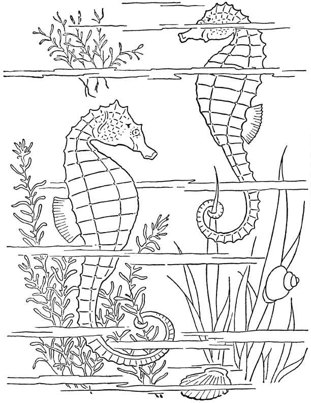 612x792 Adult Coloring Page