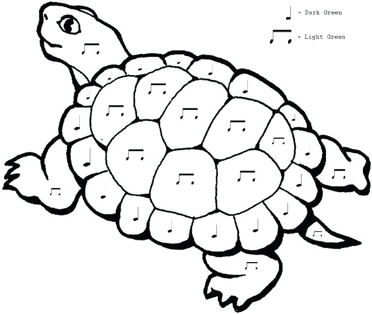 736x623 Grade Coloring Pages First Grade Coloring Pages Science Math