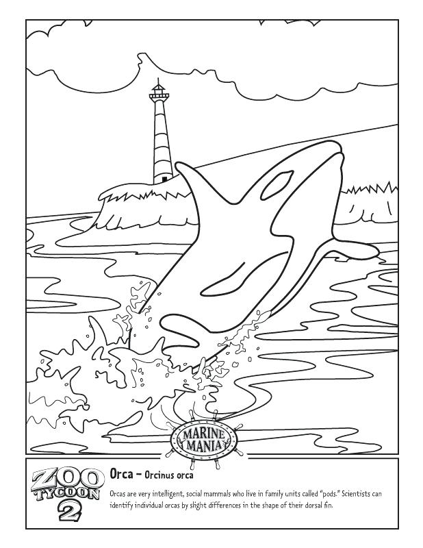618x800 David Becomes King Coloring Pages Colouring Pages Page Killer