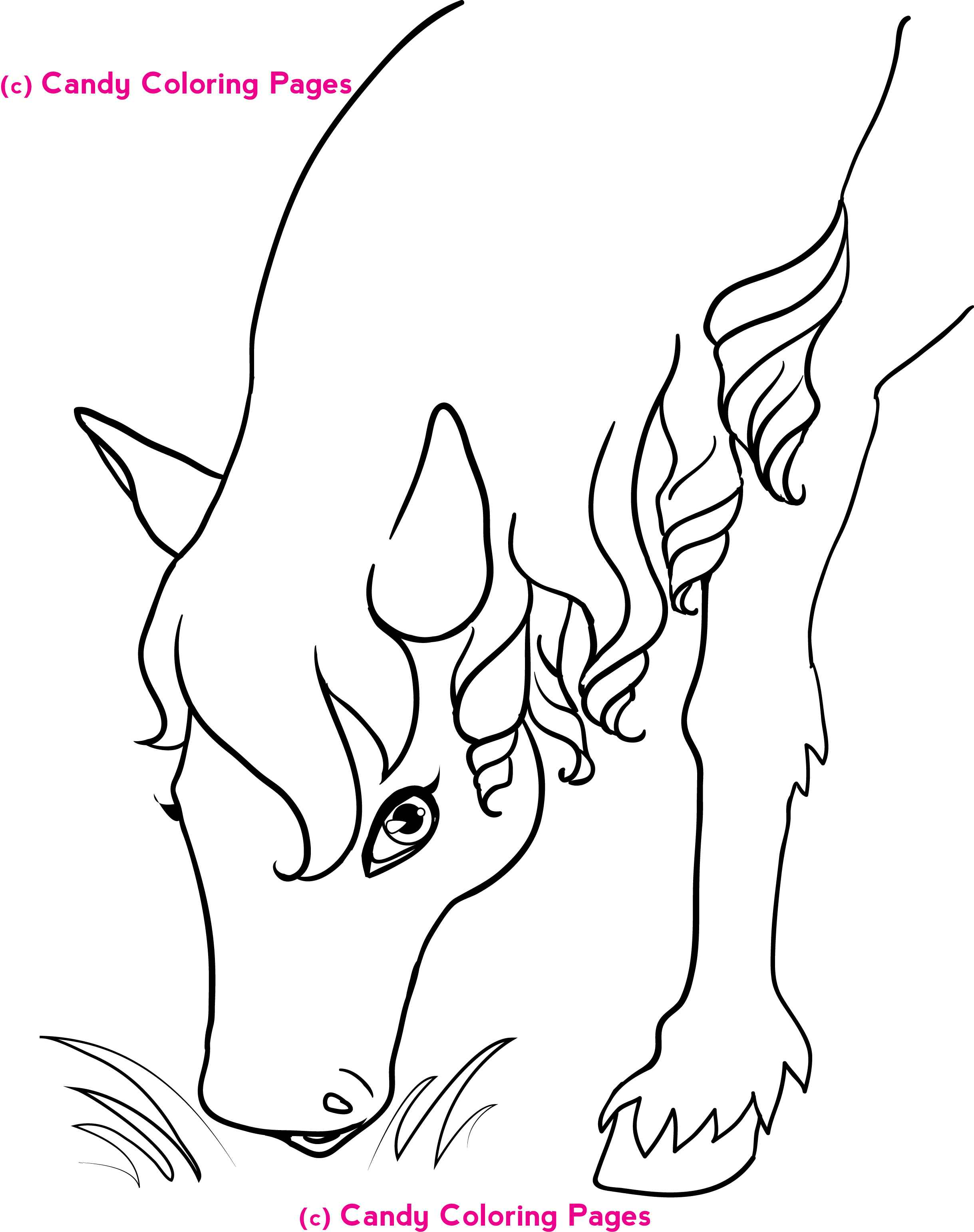 2438x3083 Grade Coloring Pages Fun Sheets For Stimulating Your Kids' Skill