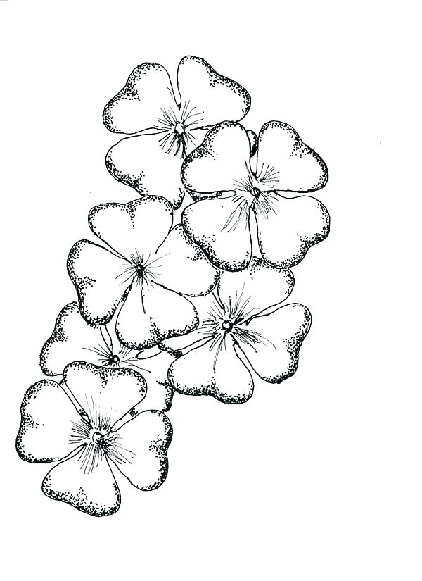 600x825 Four Leaf Clover Coloring Pages Four Leaf Clover Coloring Pages