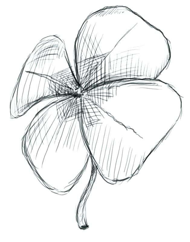 629x800 Astounding Leaf Clover Coloring Page