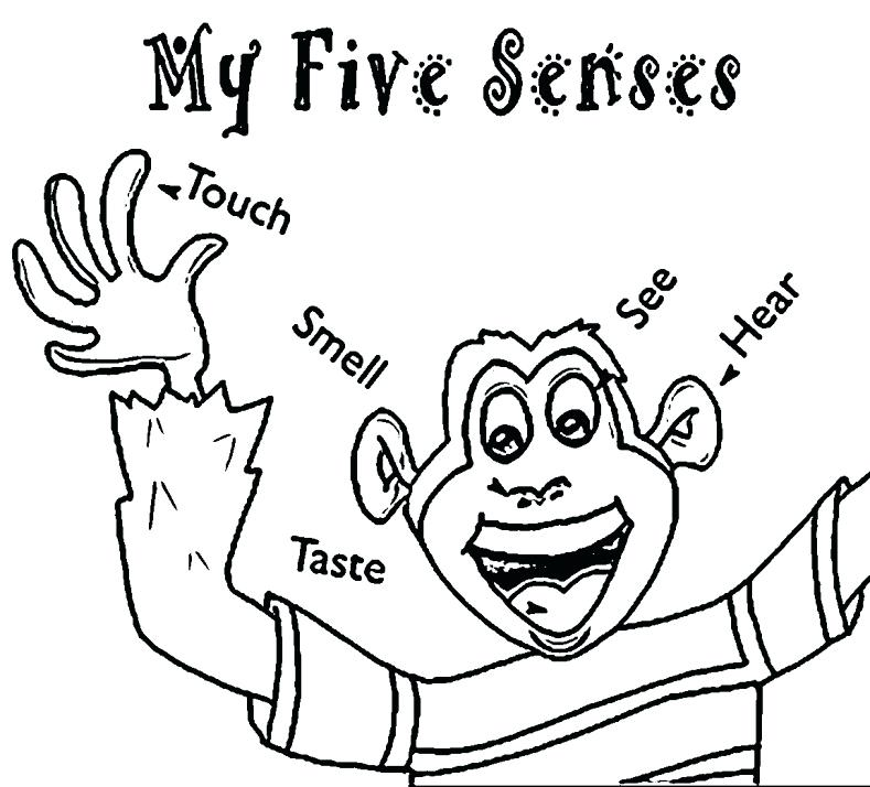 5 Senses Coloring Pages at GetDrawings.com | Free for personal use 5 ...