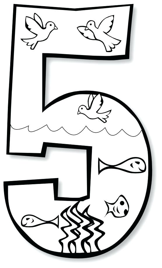 555x915 Days Of Creation Coloring Pages Plus Site New At Gods Day