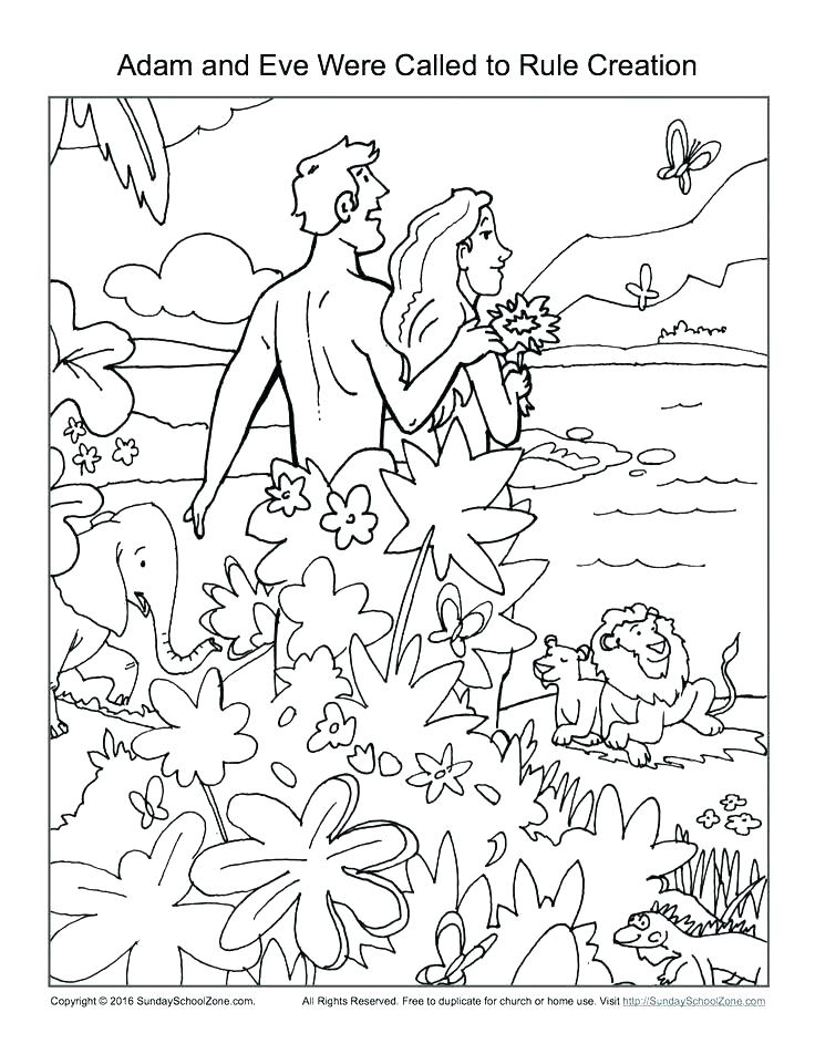 736x952 Seven Days Of Creation Coloring Pages Plus Seven Days Of Creation