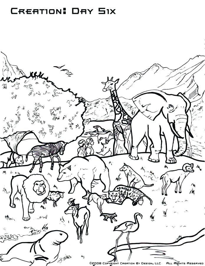 7 Days Of Creation Coloring Pages Free At Getdrawings Com Free For