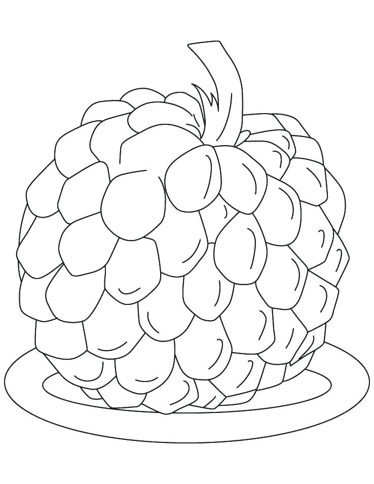 738x954 Apple Tree Coloring A Is For Apple Coloring Page Apple Coloring