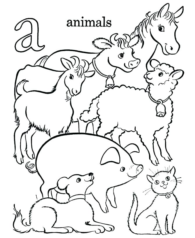 670x820 Farm Pictures To Print Animal Coloring Pages Free Printable Free